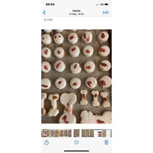 Venison & Goji Berry Dog biscuits (pk of 30)
