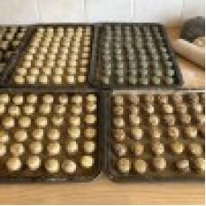 Flax,Sunflower & Pumpin VEGAN & GRAIN FREE Dog biscuits (pk of 30)